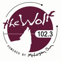 WMOS_logo